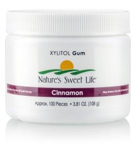 Xylitol Gum (Cinnamon) (100)