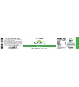 Xylitol Gum (Spearmint) (100)