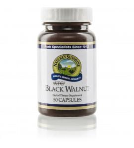 Black Walnut ATC Conc. (50 Caps)